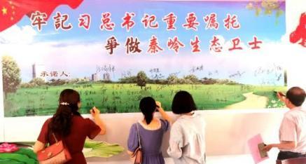 陕西省商洛市柞水县乾佑街道办迎春社区开展主题党日活动