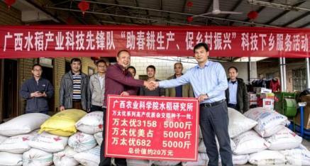 广西农科院水稻研究所20万元的谷种送全州县粮食种植户