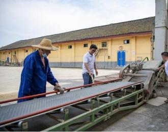 全州县庙头粮油购销公司做好2021年早稻谷入库前准备工作